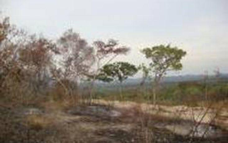 Foto de terreno habitacional en venta en, san marcos, cochoapa el grande, guerrero, 1907889 no 03