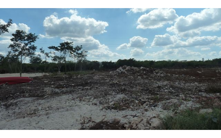 Foto de terreno habitacional en venta en  , san marcos nocoh, mérida, yucatán, 1178045 No. 08