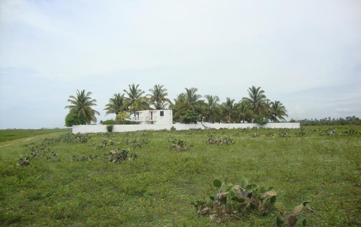 Foto de casa en venta en  , san marcos, san marcos, guerrero, 1074349 No. 09