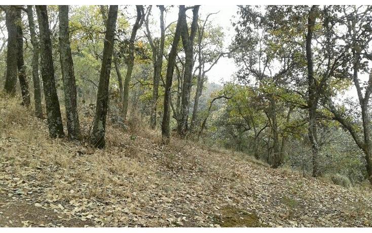 Foto de terreno comercial en venta en  , san mart?n cachihuapan, villa del carb?n, m?xico, 1086103 No. 01