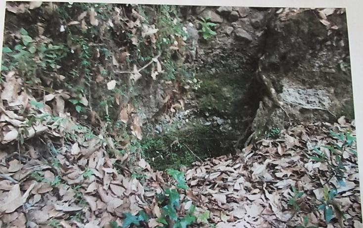 Foto de terreno comercial en venta en  , san martín cachihuapan, villa del carbón, méxico, 1972436 No. 06