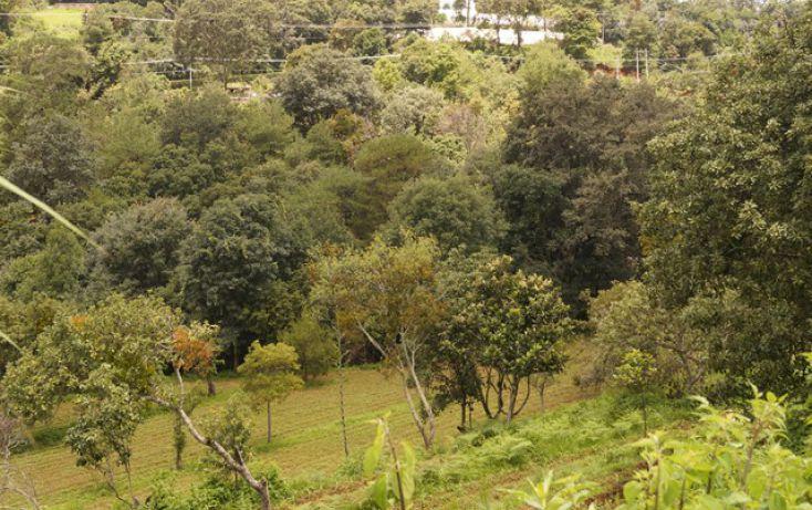 Foto de terreno habitacional en venta en, san martín coapaxtongo, tenancingo, estado de méxico, 1291751 no 03