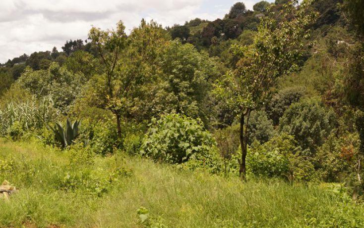 Foto de terreno habitacional en venta en, san martín coapaxtongo, tenancingo, estado de méxico, 1291751 no 04