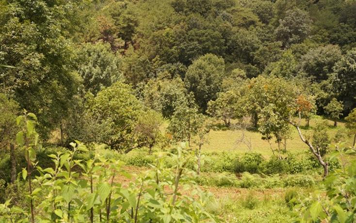 Foto de terreno habitacional en venta en  , san martín coapaxtongo, tenancingo, méxico, 1291751 No. 01