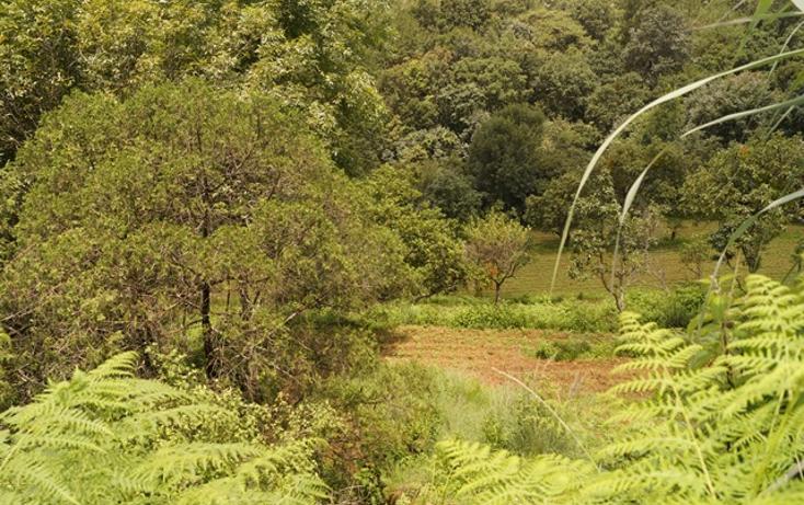 Foto de terreno habitacional en venta en  , san martín coapaxtongo, tenancingo, méxico, 1291751 No. 02