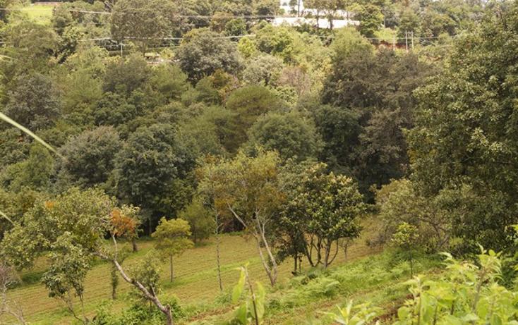 Foto de terreno habitacional en venta en  , san martín coapaxtongo, tenancingo, méxico, 1291751 No. 03