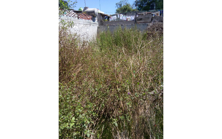 Foto de terreno habitacional en venta en  , san martín el calvario, tultepec, méxico, 1419847 No. 06