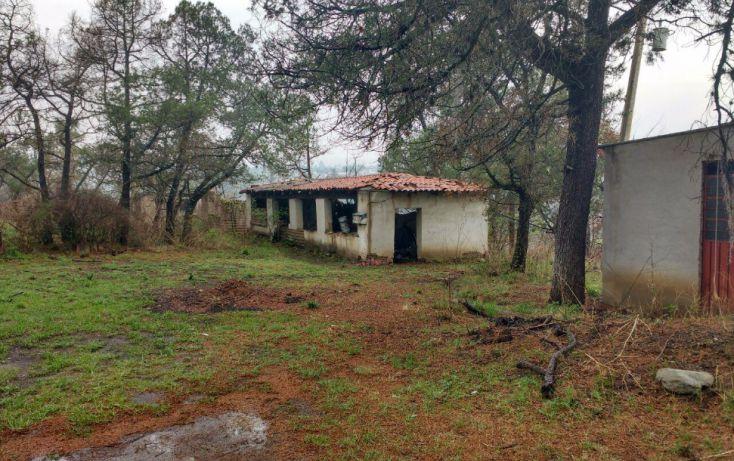 Foto de casa en venta en, san martinito, tlahuapan, puebla, 1980286 no 05