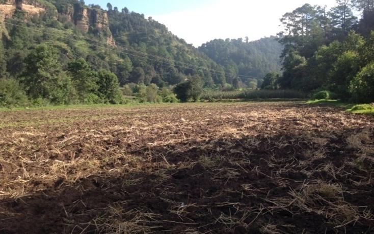 Foto de terreno habitacional en venta en san mateo amanalco , valle de bravo, valle de bravo, méxico, 1872426 No. 05