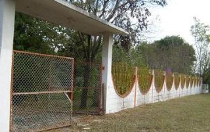 Foto de terreno habitacional en venta en  , san mateo, juárez, nuevo león, 1308323 No. 02