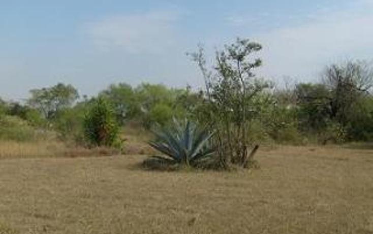 Foto de terreno habitacional en venta en  , san mateo, juárez, nuevo león, 1308323 No. 03