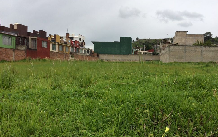 Foto de terreno habitacional en venta en  , san mateo oxtotitlán, toluca, méxico, 1358777 No. 06
