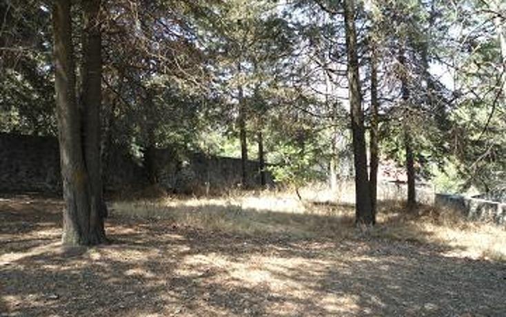 Foto de terreno habitacional en venta en  , san mateo xalpa, xochimilco, distrito federal, 1095671 No. 02