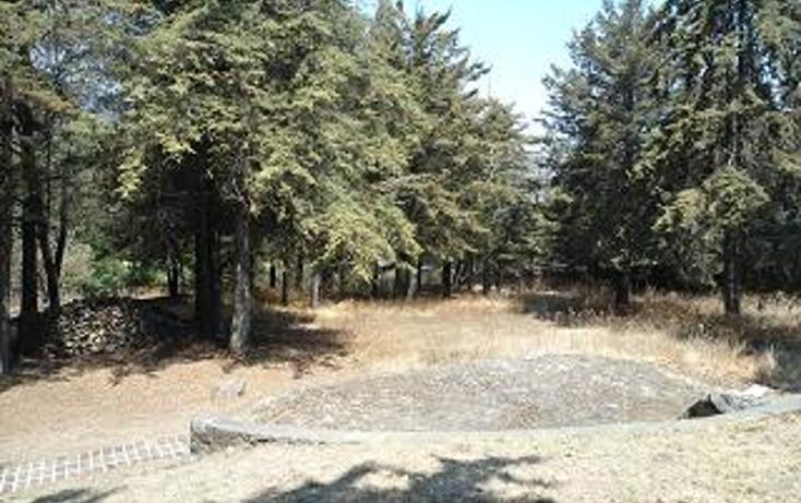 Foto de terreno habitacional en venta en  , san mateo xalpa, xochimilco, distrito federal, 1095671 No. 04