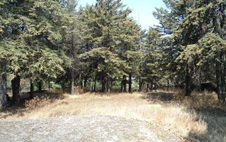 Foto de terreno habitacional en venta en  , san mateo xalpa, xochimilco, distrito federal, 1095671 No. 05