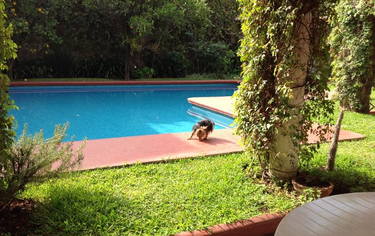 Foto de casa en venta en  , san miguel acapantzingo, cuernavaca, morelos, 1073331 No. 05