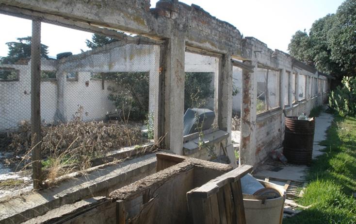 Foto de terreno habitacional en venta en  , san miguel ajusco, tlalpan, distrito federal, 1268753 No. 07