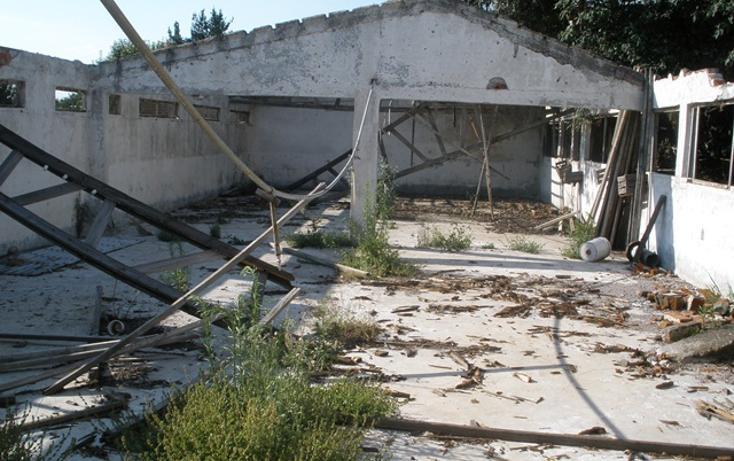 Foto de terreno habitacional en venta en  , san miguel ajusco, tlalpan, distrito federal, 1268753 No. 10