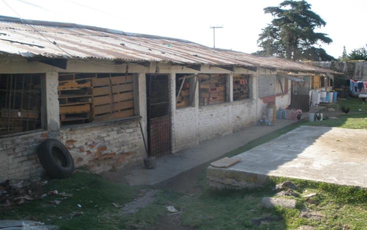 Foto de terreno habitacional en venta en  , san miguel ajusco, tlalpan, distrito federal, 1268753 No. 13