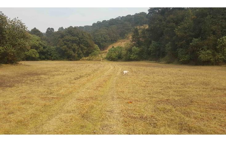Foto de terreno comercial en venta en  , san miguel ameyalco, lerma, méxico, 1042129 No. 03
