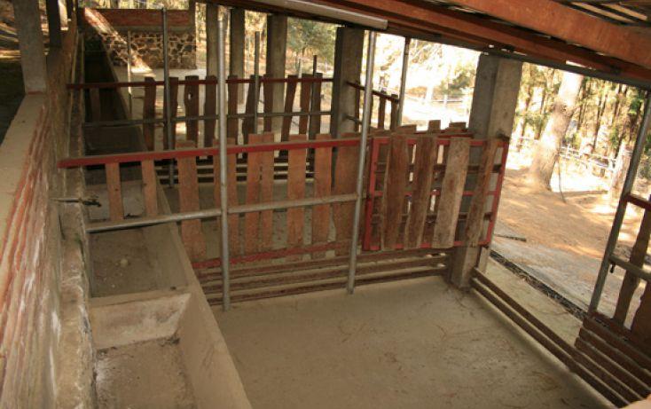 Foto de casa en venta en, san miguel contla, san salvador el verde, puebla, 1482403 no 19