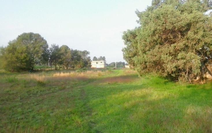 Foto de terreno habitacional en venta en  , san miguel contla, santa cruz tlaxcala, tlaxcala, 2021671 No. 01