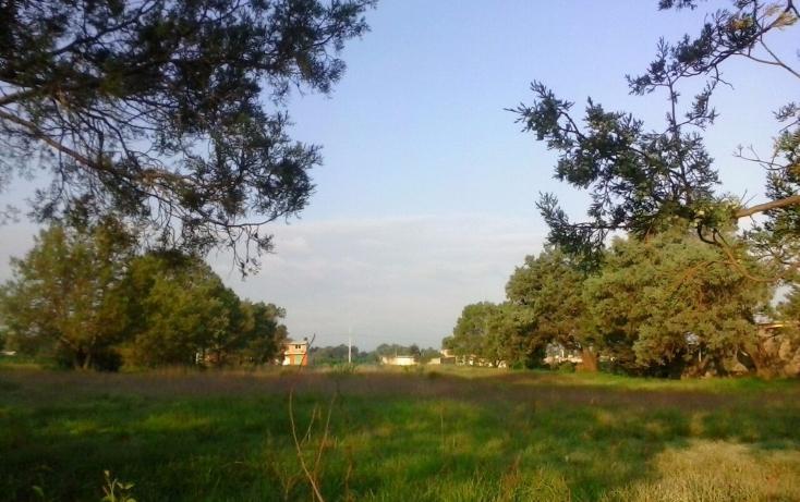 Foto de terreno habitacional en venta en  , san miguel contla, santa cruz tlaxcala, tlaxcala, 2021671 No. 04
