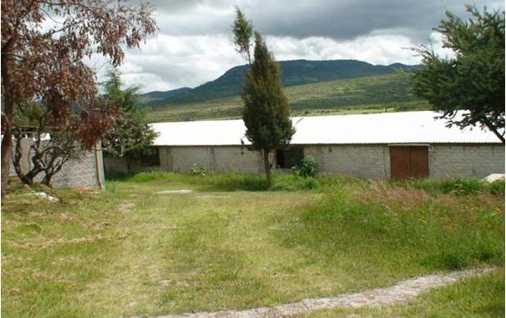 Foto de rancho en venta en  , san miguel de allende centro, san miguel de allende, guanajuato, 1472277 No. 06