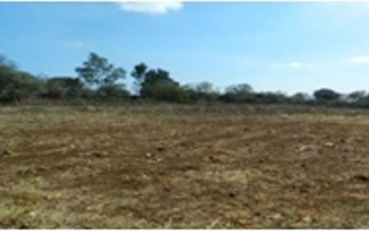 Foto de terreno comercial en venta en  , san miguel de la victoria, jilotepec, méxico, 1460997 No. 03