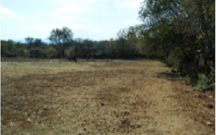 Foto de terreno comercial en venta en  , san miguel de la victoria, jilotepec, méxico, 1460997 No. 04