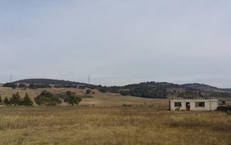 Foto de terreno comercial en venta en  , san miguel de la victoria, jilotepec, méxico, 1661826 No. 05