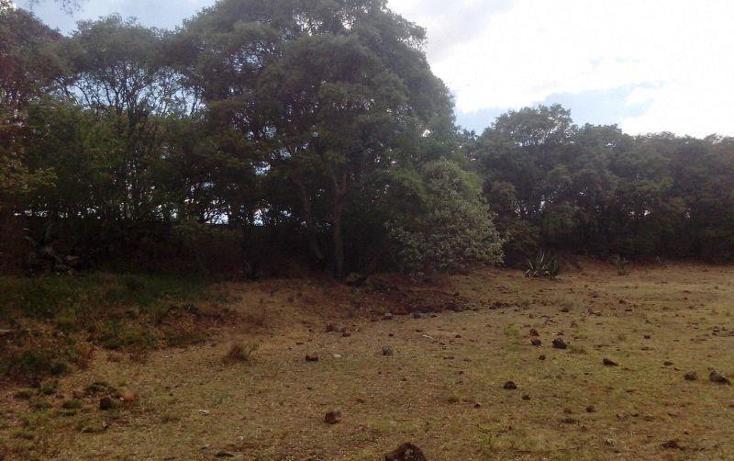 Foto de terreno comercial en venta en  , san miguel de la victoria, jilotepec, méxico, 488940 No. 02