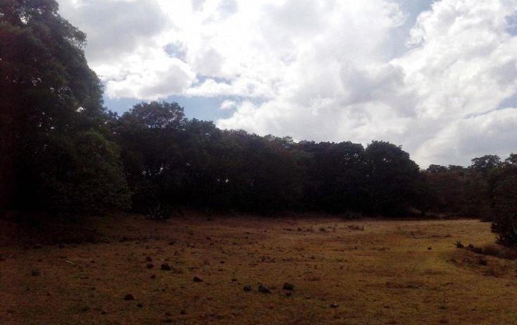 Foto de terreno comercial en venta en  , san miguel de la victoria, jilotepec, méxico, 488940 No. 03