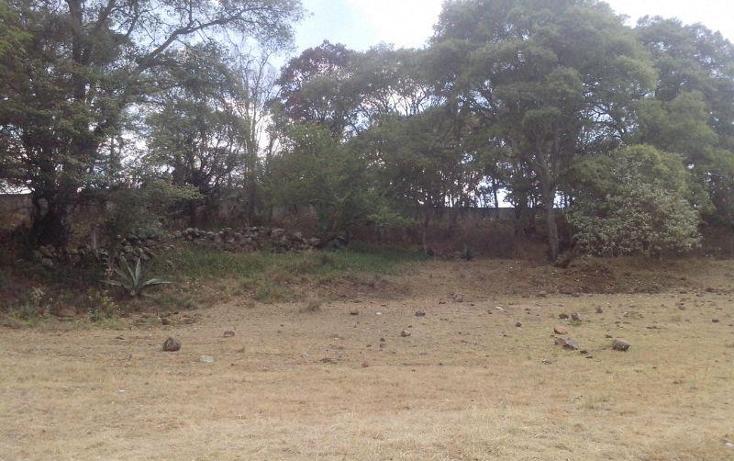 Foto de terreno comercial en venta en  , san miguel de la victoria, jilotepec, méxico, 488940 No. 04