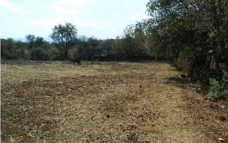 Foto de terreno habitacional en venta en san miguel de la victoria sn, durazno de guerrero, jilotepec, estado de méxico, 1909053 no 01