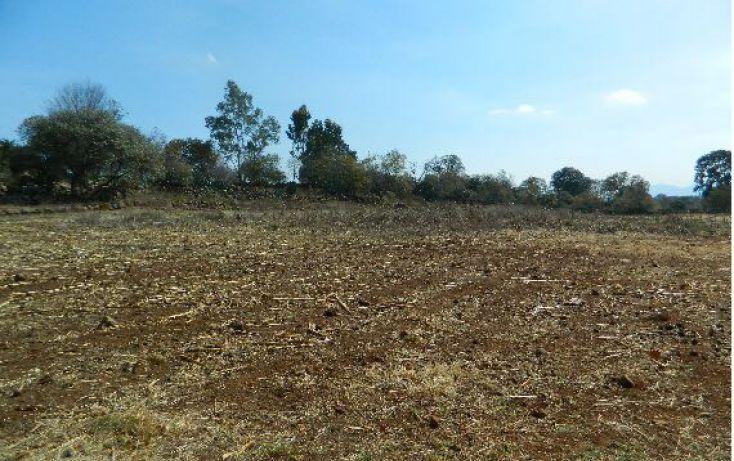 Foto de terreno habitacional en venta en san miguel de la victoria sn, durazno de guerrero, jilotepec, estado de méxico, 1909053 no 03