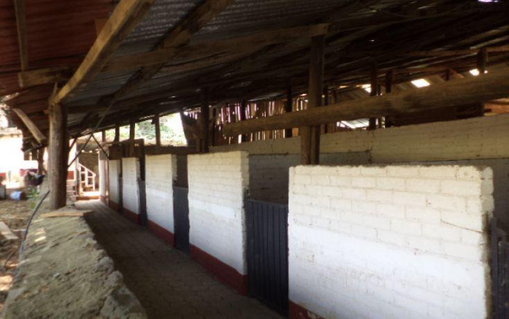 Foto de terreno comercial en renta en, san miguel topilejo, tlalpan, df, 1292593 no 32