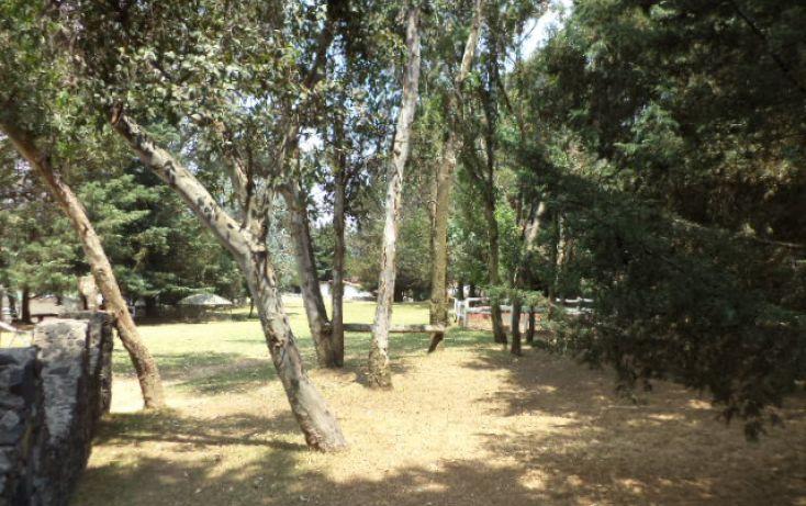 Foto de terreno comercial en renta en, san miguel topilejo, tlalpan, df, 1292593 no 33