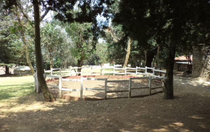 Foto de terreno comercial en renta en, san miguel topilejo, tlalpan, df, 1292593 no 35