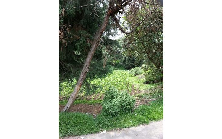 Foto de terreno habitacional en venta en  , san miguel topilejo, tlalpan, distrito federal, 1051359 No. 05