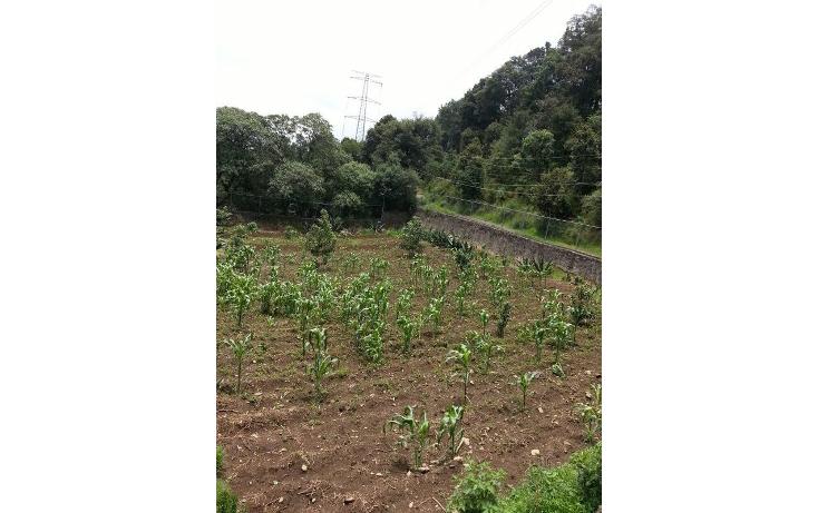 Foto de terreno habitacional en venta en  , san miguel topilejo, tlalpan, distrito federal, 1051359 No. 10