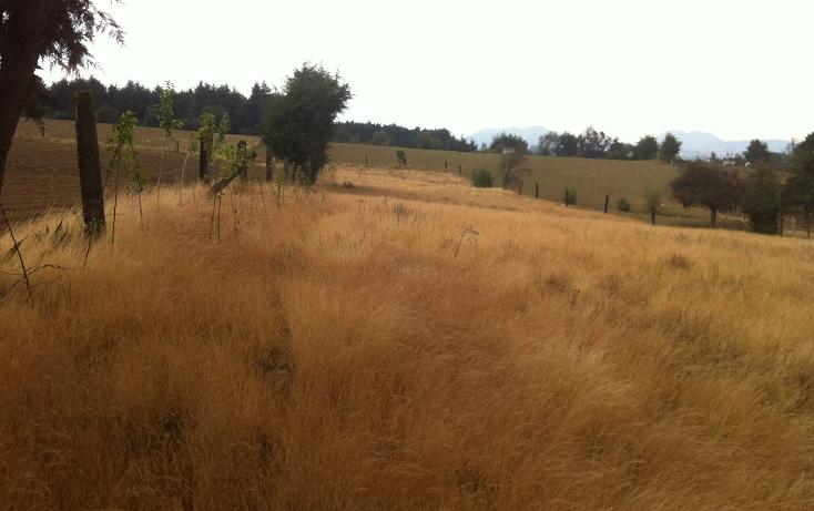 Foto de terreno habitacional en venta en  , san miguel topilejo, tlalpan, distrito federal, 1139097 No. 05
