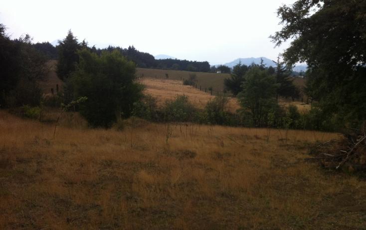 Foto de terreno habitacional en venta en  , san miguel topilejo, tlalpan, distrito federal, 1139097 No. 07