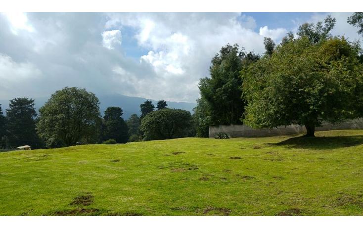 Foto de terreno habitacional en venta en  , san miguel topilejo, tlalpan, distrito federal, 1170059 No. 05