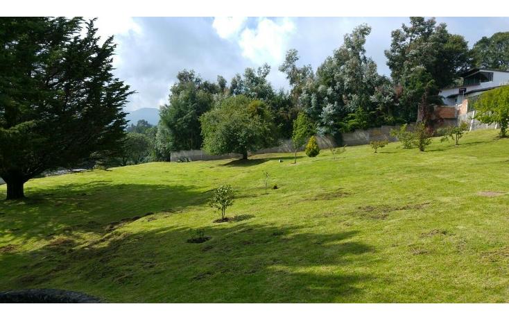 Foto de terreno habitacional en venta en  , san miguel topilejo, tlalpan, distrito federal, 1170059 No. 11