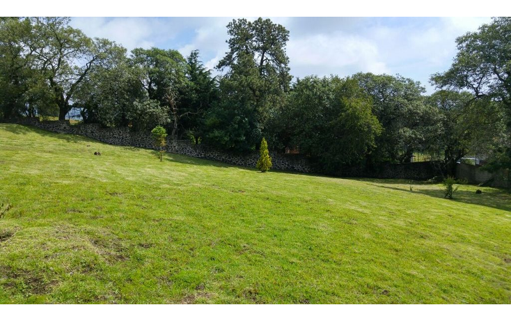 Foto de terreno habitacional en venta en  , san miguel topilejo, tlalpan, distrito federal, 1170059 No. 21