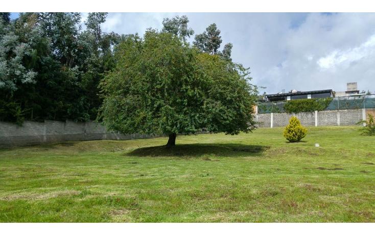 Foto de terreno habitacional en venta en  , san miguel topilejo, tlalpan, distrito federal, 1170059 No. 30
