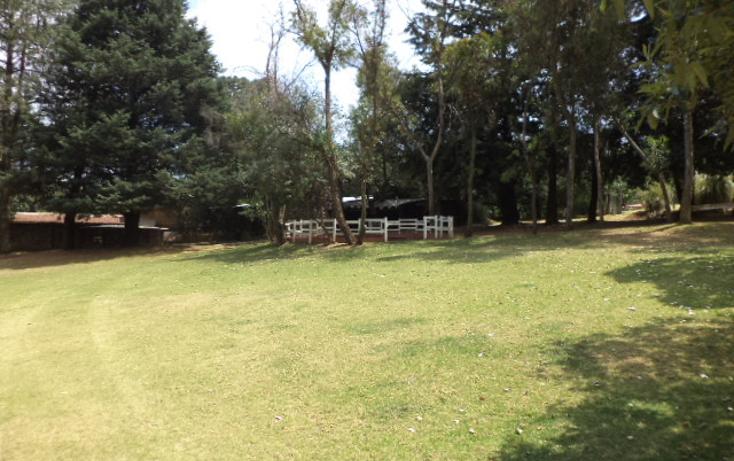 Foto de terreno comercial en venta en  , san miguel topilejo, tlalpan, distrito federal, 1274619 No. 13
