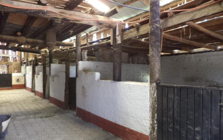 Foto de terreno comercial en venta en  , san miguel topilejo, tlalpan, distrito federal, 1274619 No. 15