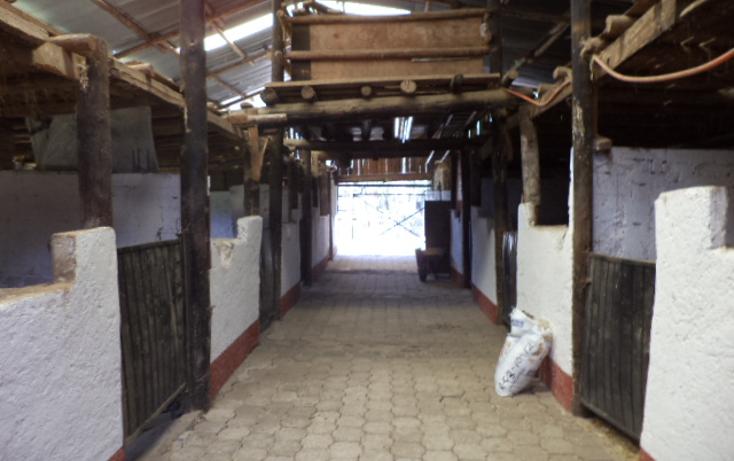 Foto de terreno comercial en venta en  , san miguel topilejo, tlalpan, distrito federal, 1274619 No. 16